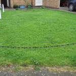 front lawn before